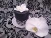 8-cup-cake-v-cerne-barve-s-orchidejemi