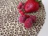 13-leopardi-dort